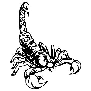 Crazy Scorpion Girl 1984